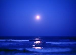 058夜の海
